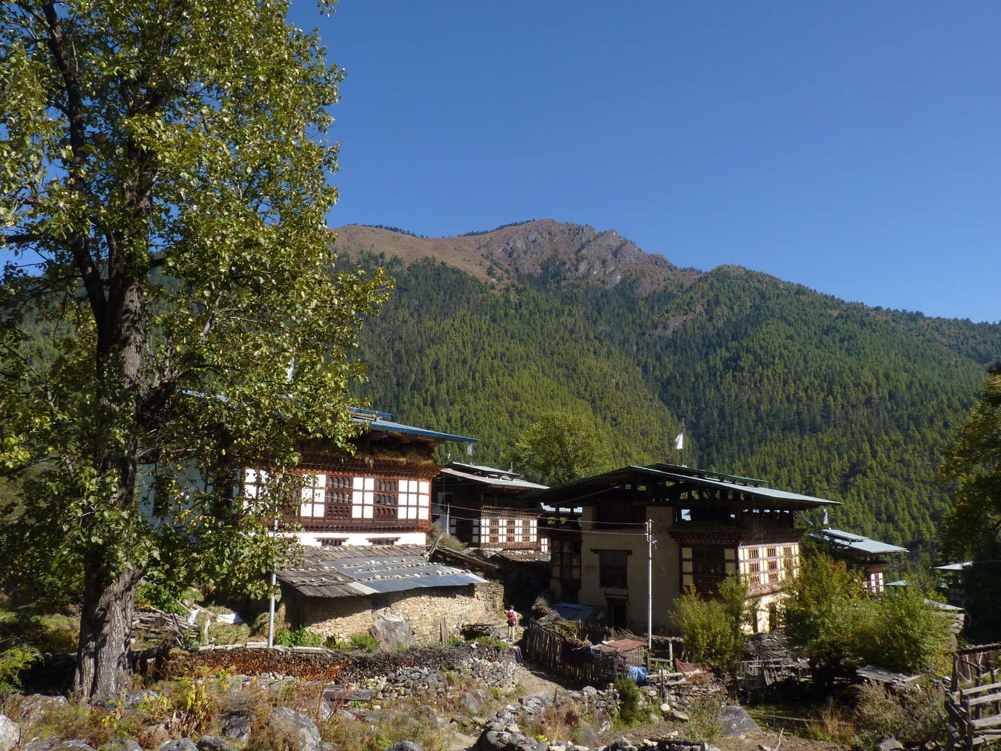 Nemjo One of our experiential tour hotels in Paro, Bhutan. Nemjo Heritage Lodge