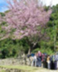 Panchase Bhanjyang Trek 10 Days Link Pic