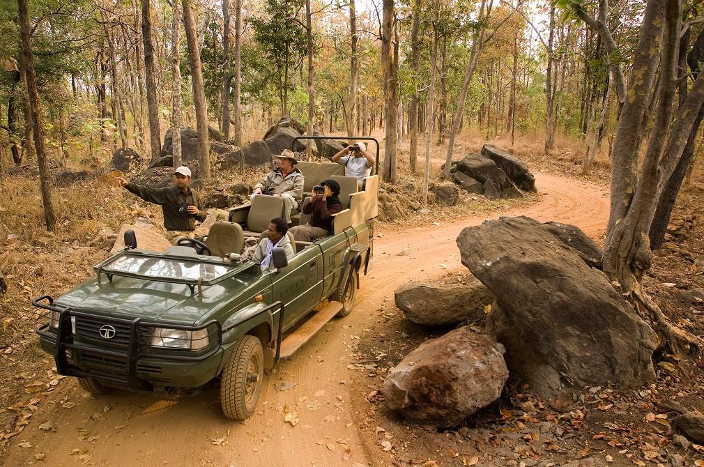 Taj Baghvan Pench Safari