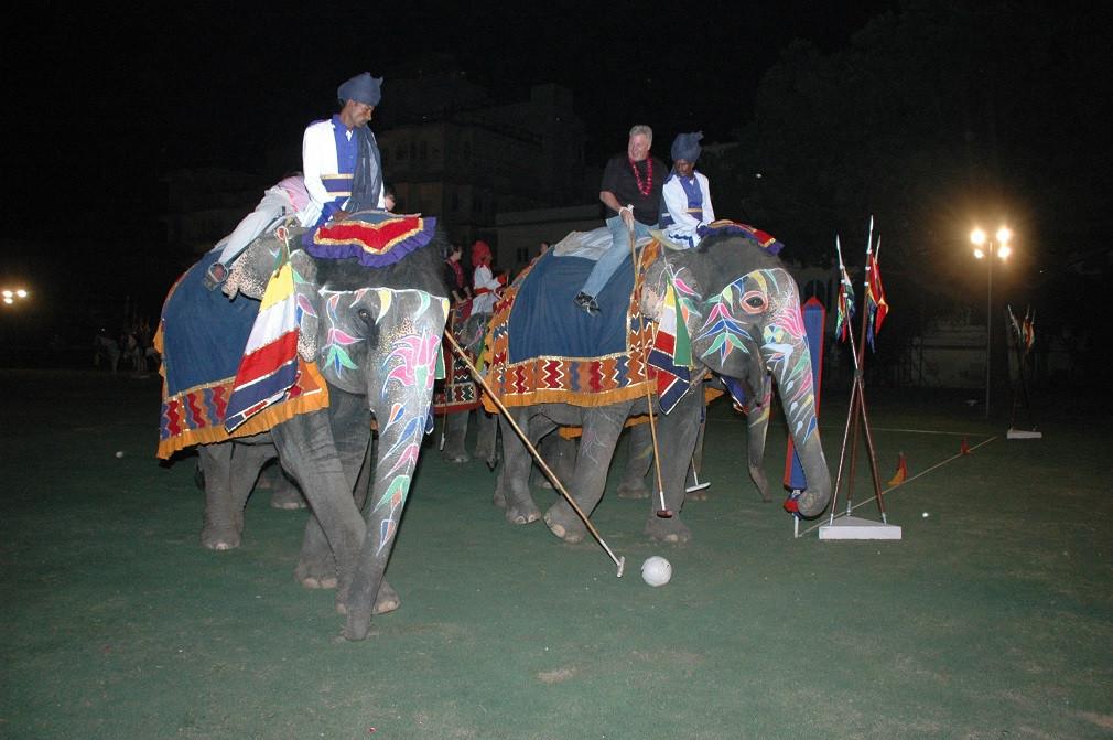Elephant Polo at City Palace, Jaipur