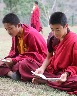 Young monks reading scriptures at a monastery.