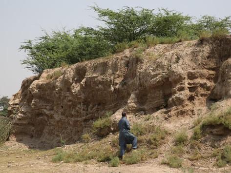 Hallan en Pakistán la que podría ser la tumba de Bucéfalo, el famoso caballo de Alejandro Magno