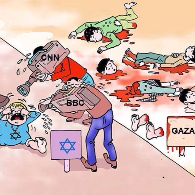 msm-partners_in_zionist_israel_crimes_of_genocide_n_ethnic_cleansing