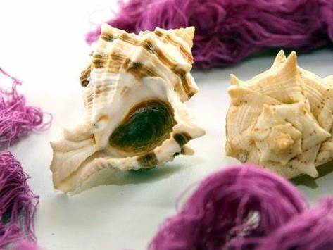 Púrpura de Tiro: el producto estrella de los fenicios