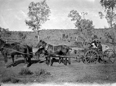 The mass exodus south before Christmas has begun, continuing a long tradition for many Territory residents. But our modes of transport are far more comfortable than way back when. Here's how the Bradshaws travelled to and from Adelaide on their holidays in 1905. Thomas Bradshaw was the postmaster at Alice Springs at the time. He's pictured here with his wife and their daughter Doris, who wrote her well-known memoir Alice on The Line about this time in their lives. Hope your journeys are quicker and less bumpy than theirs must have been!  9 December 2018  Picture: Bradshaw Collection, Northern Territory Library