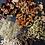 Thumbnail: Laurel Skin Almond Rose Exfoliant