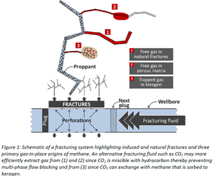 CO2 ENHANCED FRACTURING OF GAS SHALES