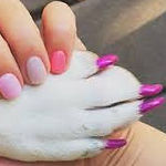 polisheddognails_edited.jpg