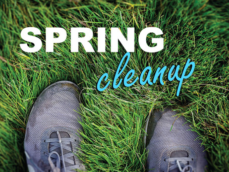 Spring Cleaning at FALC
