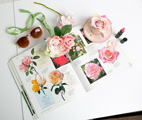 Roses set up-2.jpg