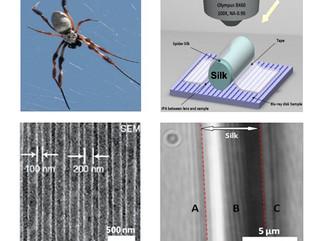 Seda de aranha transforma microscópio em nanoscópio