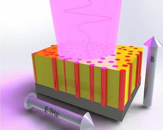 """Este gráfico ilustra as interações dos pulsos de luz terahertz (rosa) com um nanocompósito alinhado verticalmente. """"B"""" é o campo magnético e """"ETHz"""" é o campo elétrico THz. O filme nanocompósito inclui pilares minúsculos de óxido de zinco (ZnO) (vermelho) incorporados em uma matriz de manganita de estrôncio e lantânio (amarelo).[Imagem: Chris Sheehan]"""