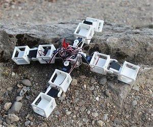 Este robô foi inteiramente gerado, projetado e construído a partir do simulador gratuito.[Imagem: Robogen/Divulgação]