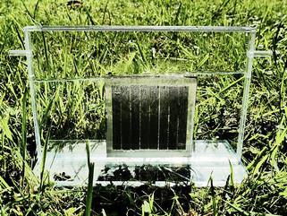 Fotossíntese artificial está a um passo da aplicação prática