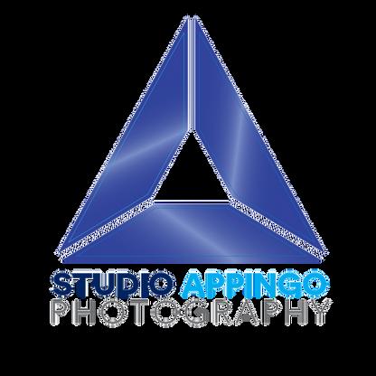 Appingo-Logo.png