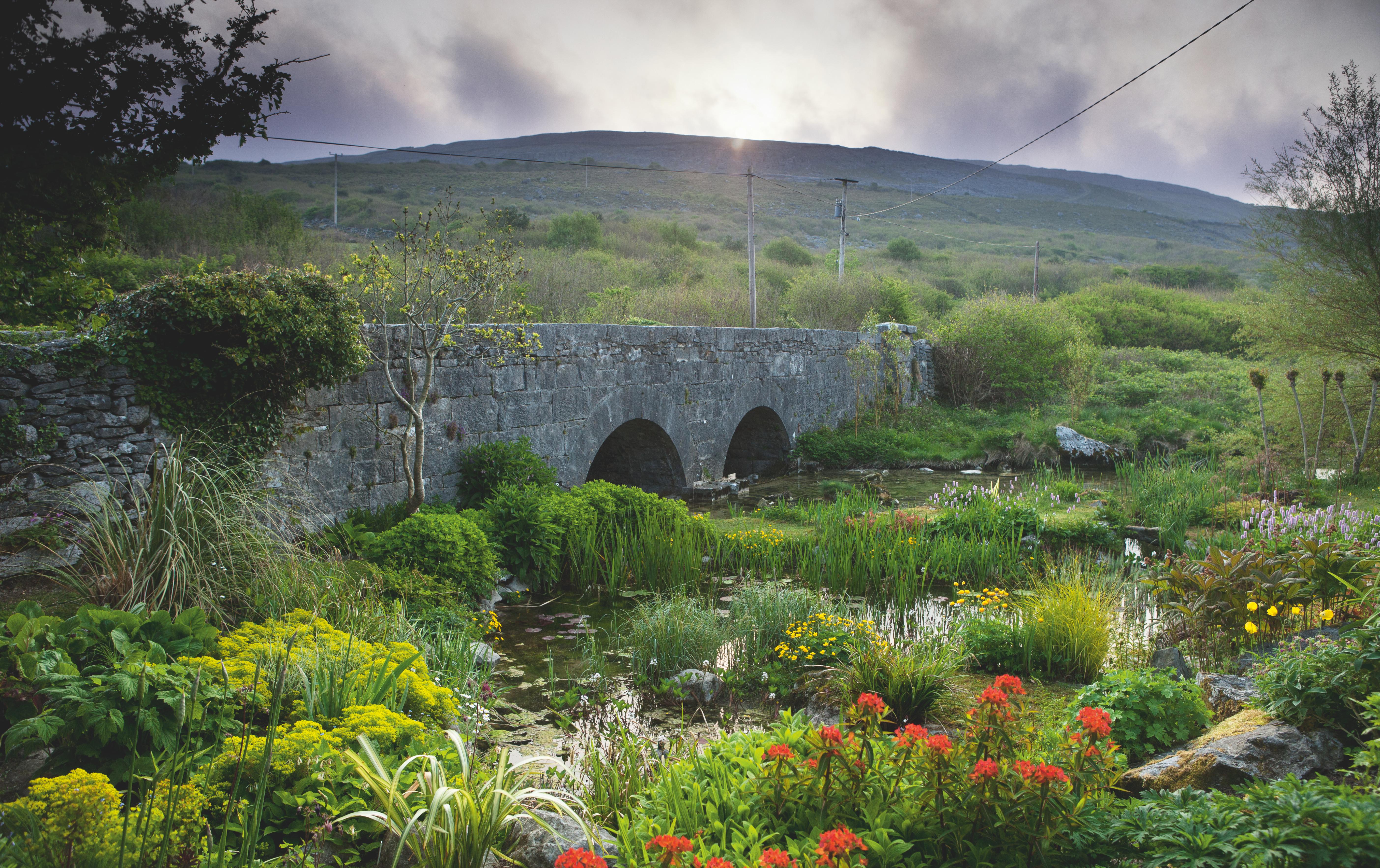 fixed-the-irish-garden-ireland-gardenista-Caher-Bridge-Pond-Garden4
