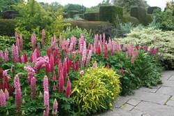 Vrtovi-Anglija-Great Dixter