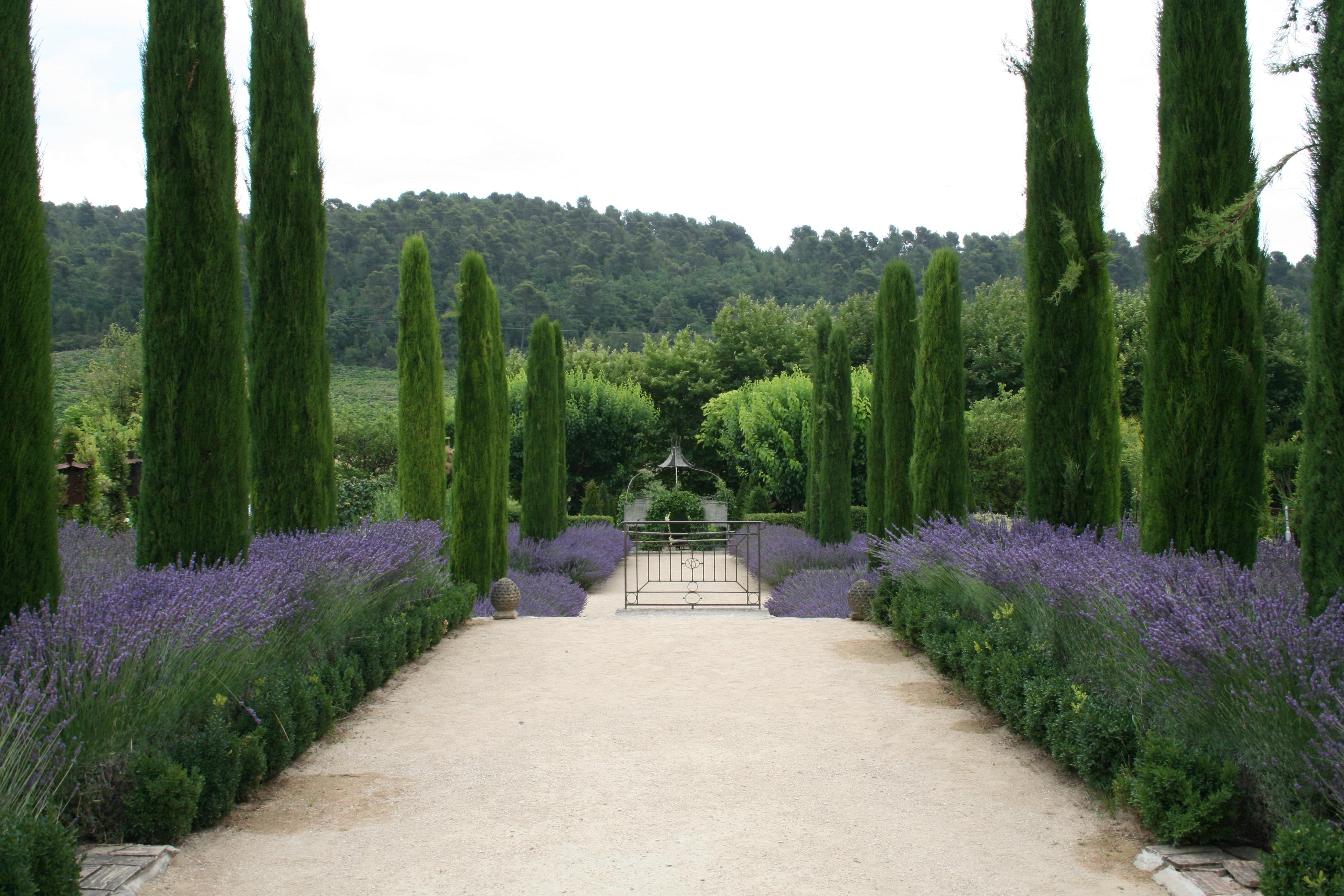 Francija-Provansa-vrtovi