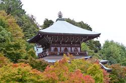 Japonska vrtovi
