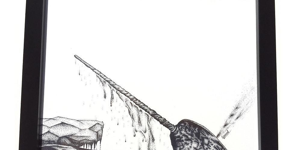 original narwhal (Monodon monoceros) ink drawing