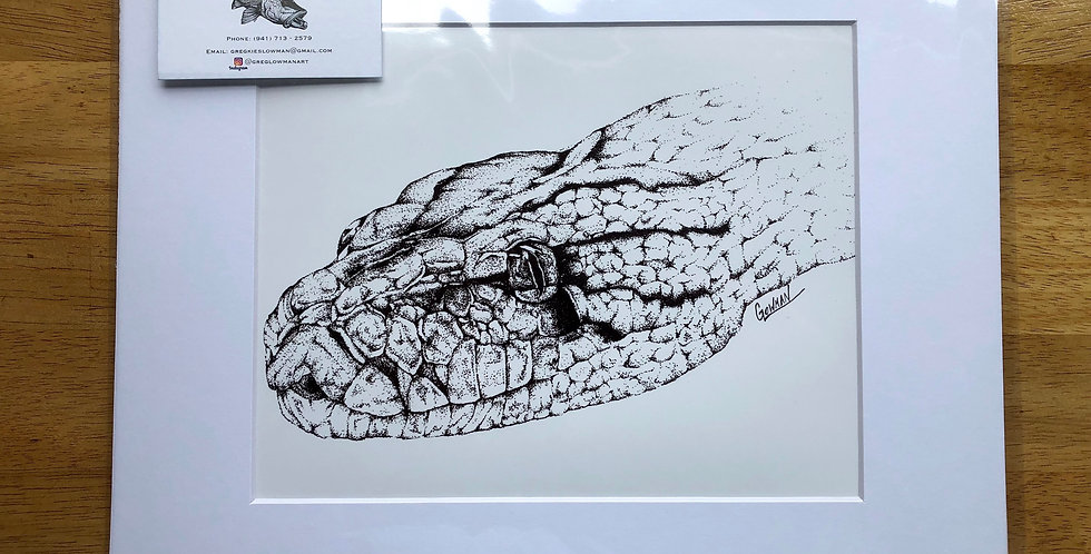 unframed python snake art prints for sale