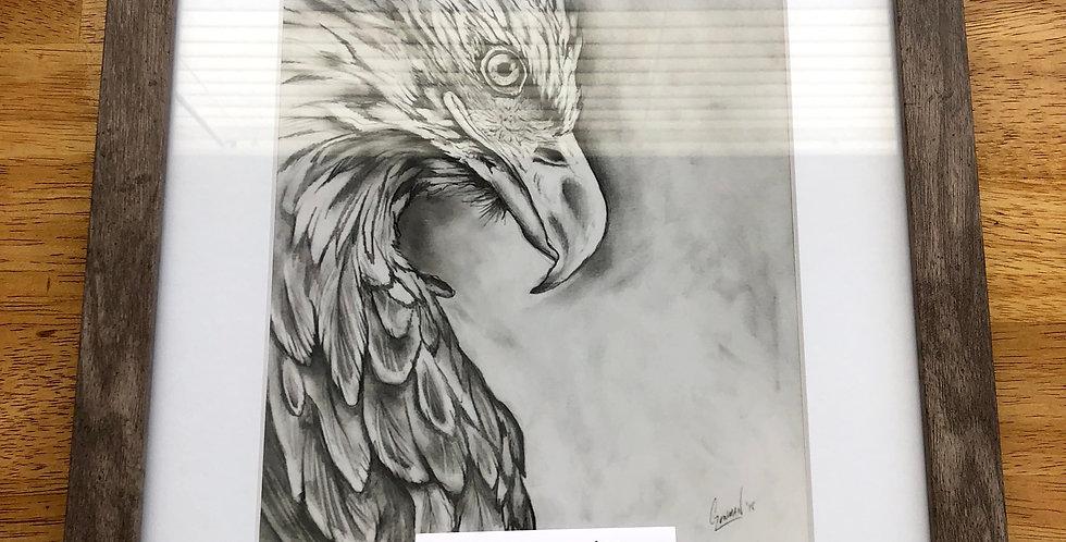 framed eagle bird art print for sale