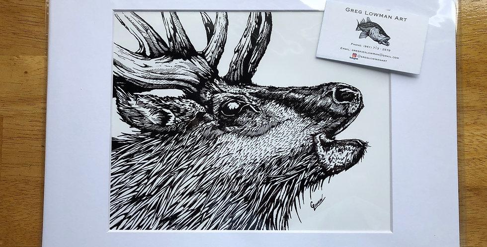 unframed elk art prints for sale