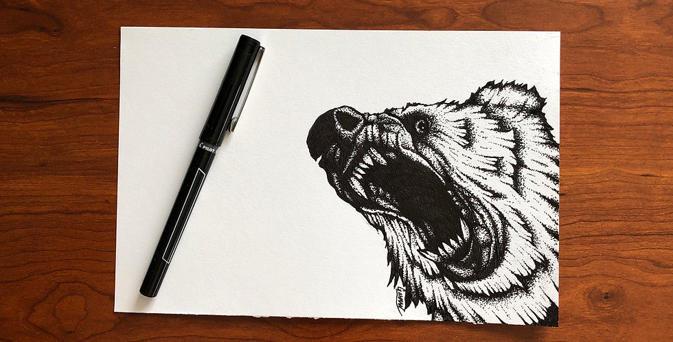 grizzly bear ink drawing