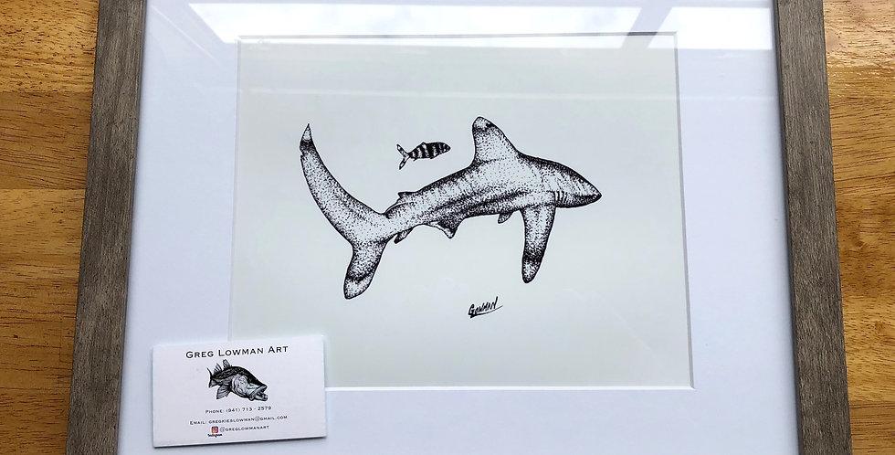 framed shark art print