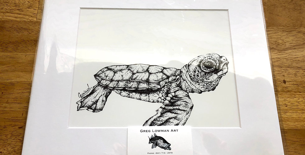unframed baby sea turtle art print for sale