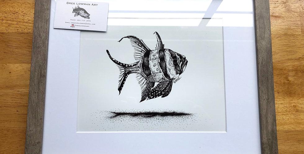 framed banggai cardinal fish art print