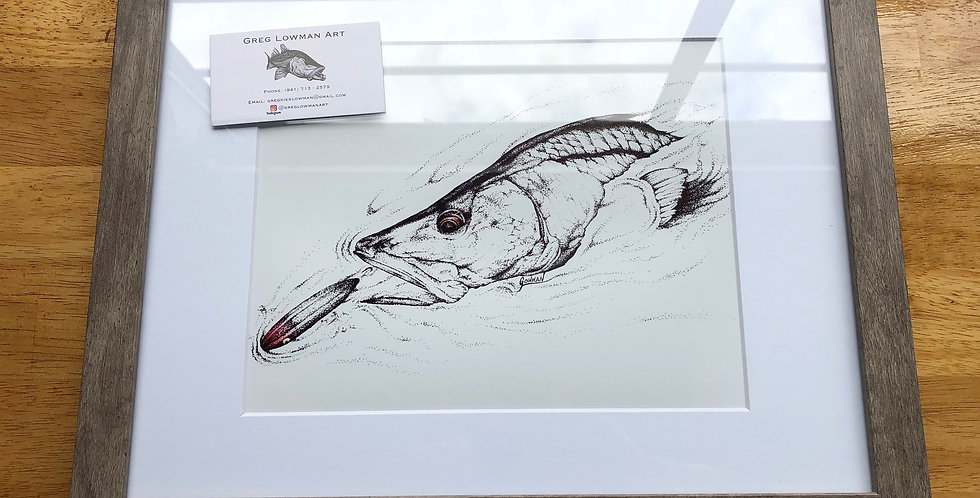 Framed topwater snook fishing print