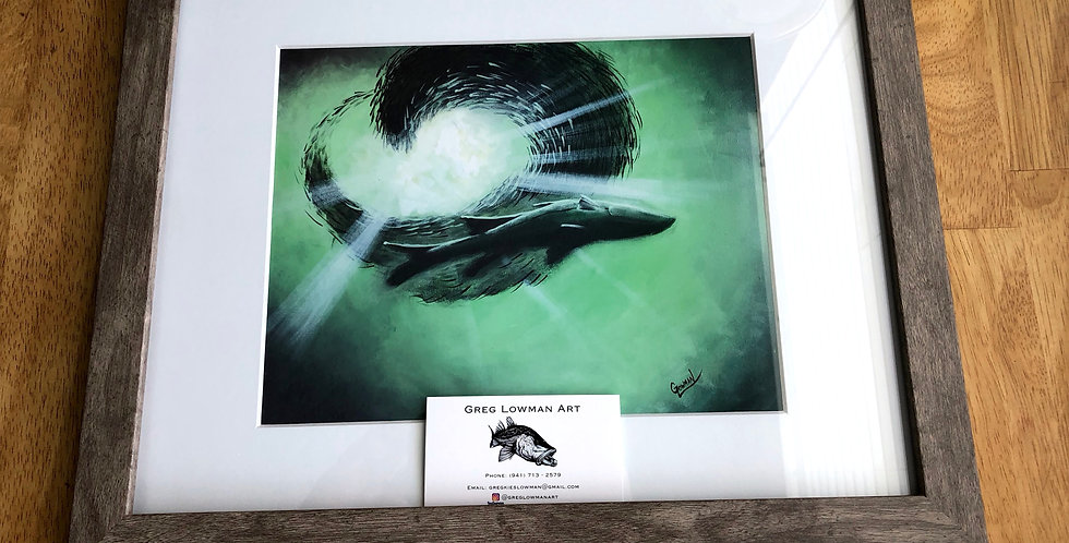 framed snook and baitfish sea life art print