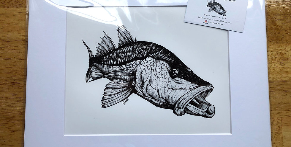unframed snook fish art prints for sale