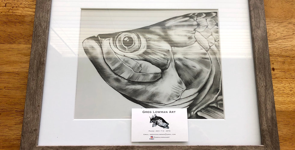 framed tarpon game fish art print for sale