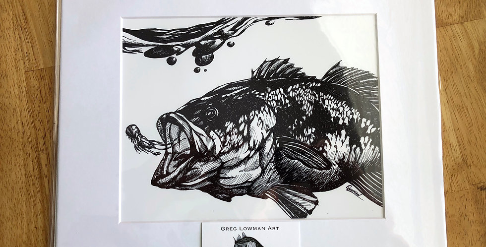 unframed largemouth bass fishing art print for sale