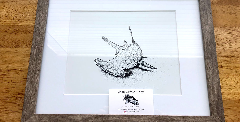 framed hammerhead shark art print for sale