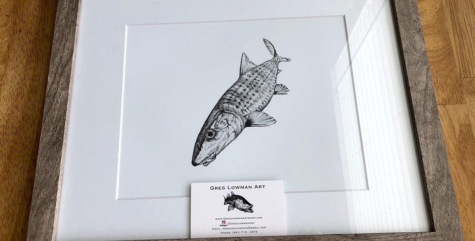 framed bonefish art print for sale