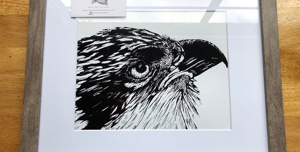framed osprey bird art print