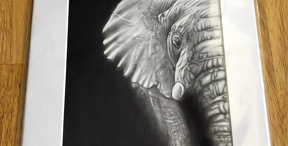unframed African elephant art print for sale