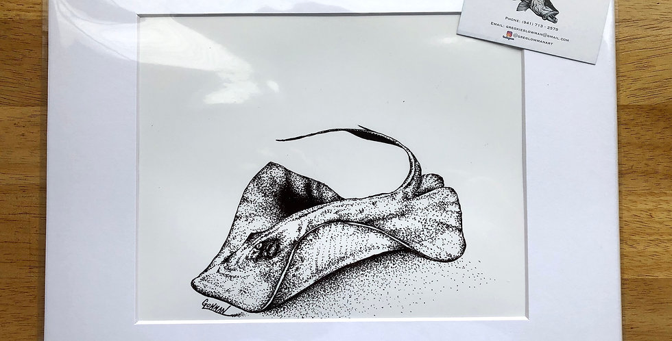 unframed Southern stingray art print for sale