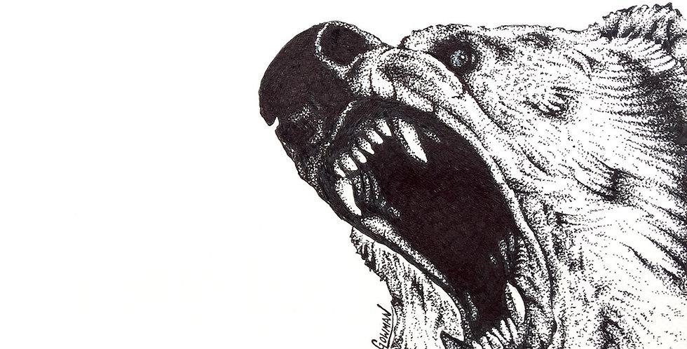 North American brown bear (Ursus arctos horribilis) drawn in ink