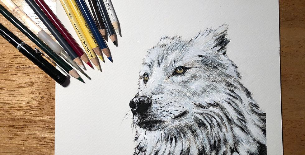 ORIGINAL White Wolf