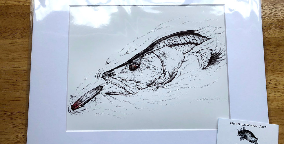 unframed tpwater snook fishing artwork