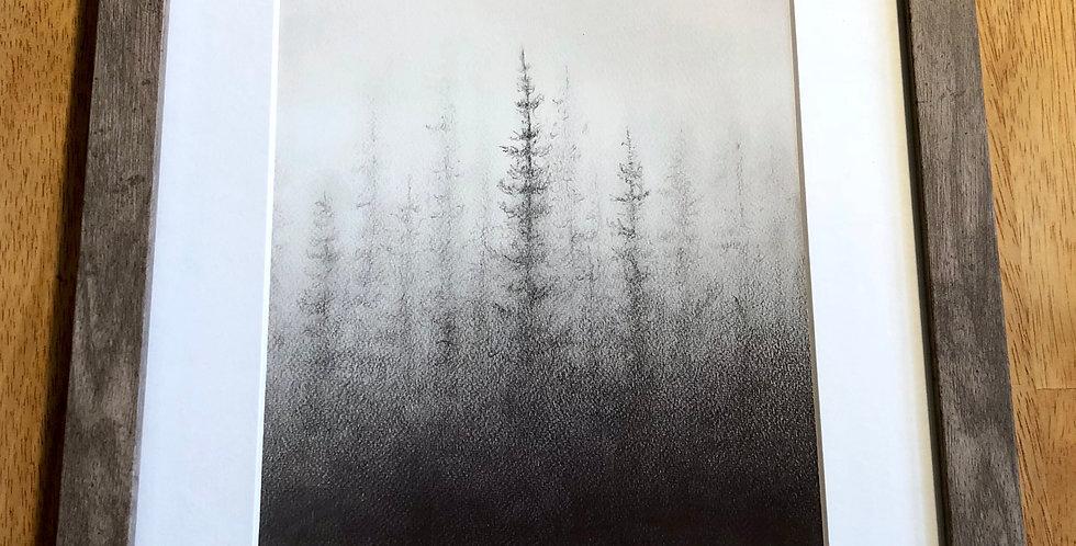 framed forest art print for sale