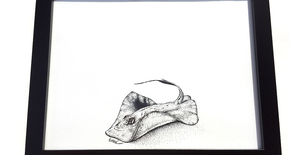 original Southern stingray ink drawing for sale