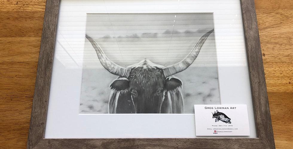 framed Texas longhorn art print for sale