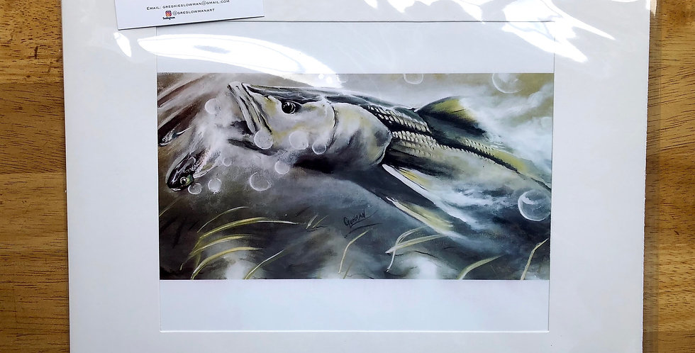 unframed snook and mullet art prints for sale