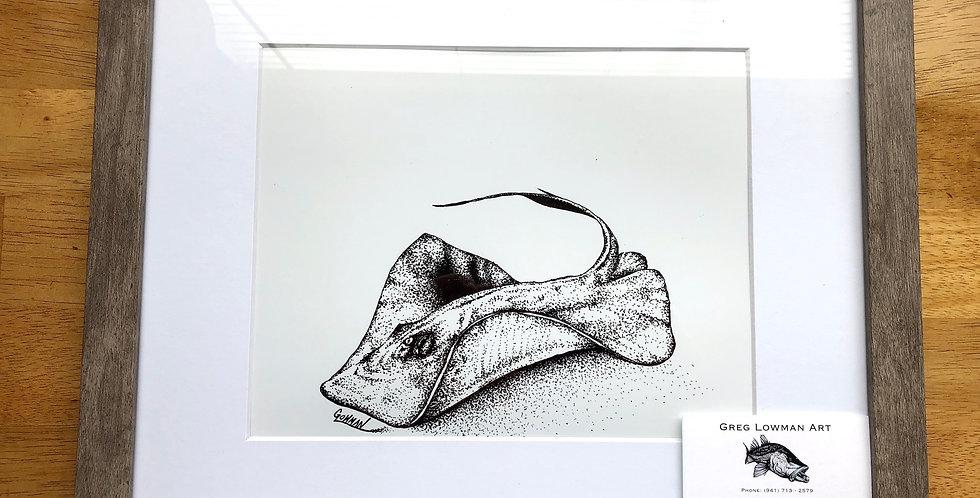 framed Southern stingray art print for sale