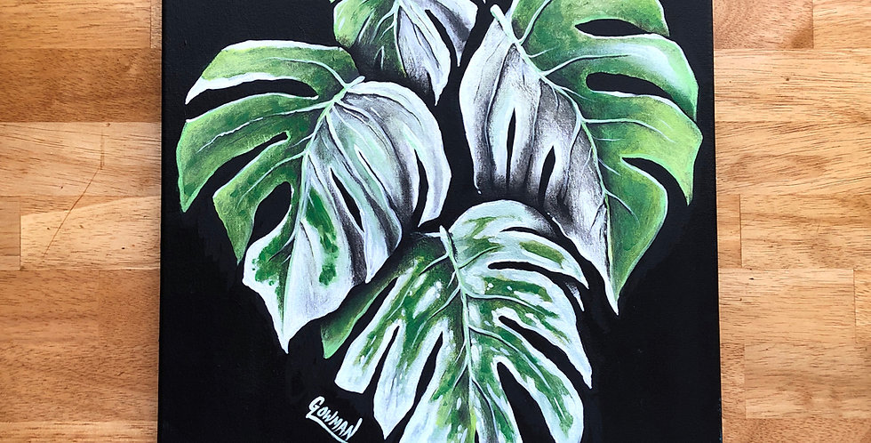 ORIGINAL Variegated Monstera Deliciosa Painting